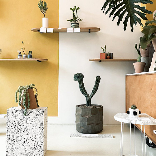 Udstilling Keramiktus 2018. Foto: Kaktus København - nu Plant